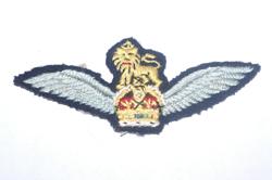 British Army - Pilot