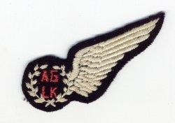 The SAAF Forum • View topic - SAAF WW2-era non-pilot aircrew