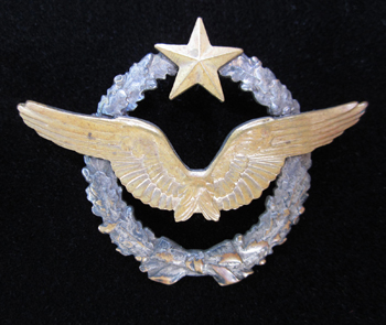 Aviation Wings and Badges of WW2 - World War I Wings - France